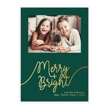 4.5x6.25 Foil Photocard - Whimsical Merry Foil